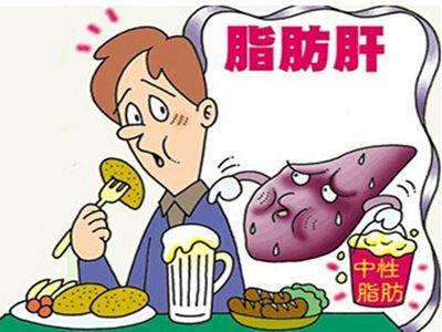 脂肪肝保肝调理服务